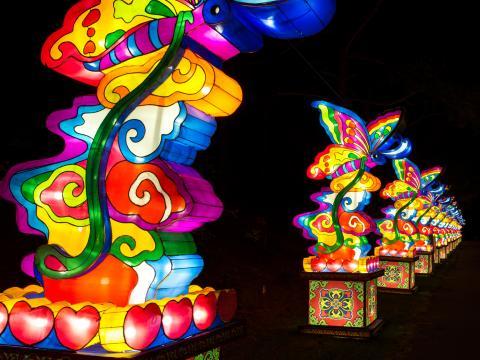 元宵节期间并排悬挂的彩色灯笼